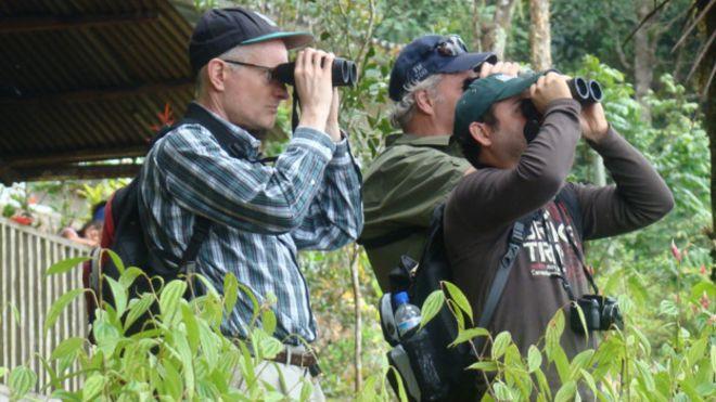 El sorprendente potencial económico de la industria del avistamiento de aves